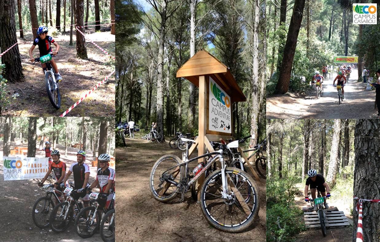 Bike Park e Mountain Bike