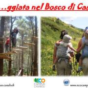 fasceggiata nel bosco di Casaboli