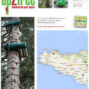 up 2  tree in sicilia